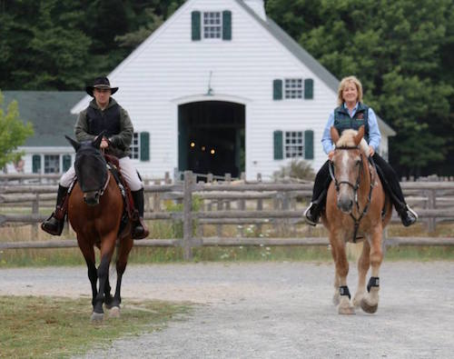 Peppy and Kalina (belgian mare for sale) at Acadia National Park
