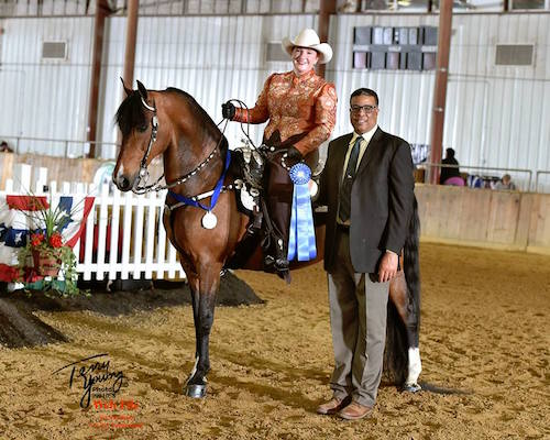Greater Boston Charity Horse Show May 2018 - Felix getting the Blue Ribbon
