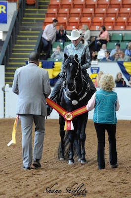 Sis getting Mass Morgan Horse show Association Championship award