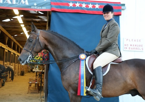 Clay wins Championship at Seacoast Morgan/Open Horse Show in Deerfield