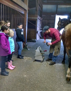 Chrislar group at horse camp day watching farrier