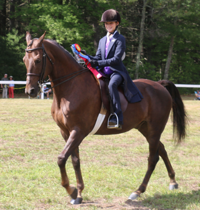 young reserve champion in saddleseat class at RRDC horse show